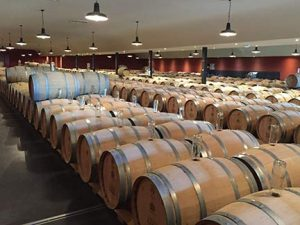 Barrel room at Sauternes Winery