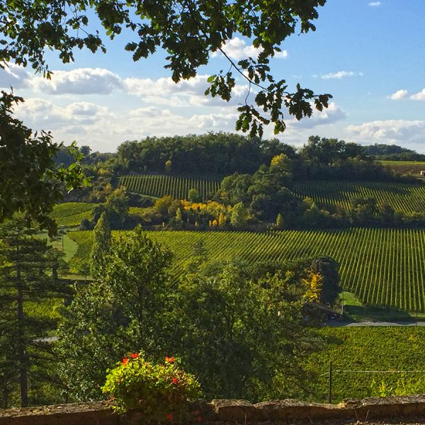 View of the vineyards at the Chateau de Pressac Winery and Estate