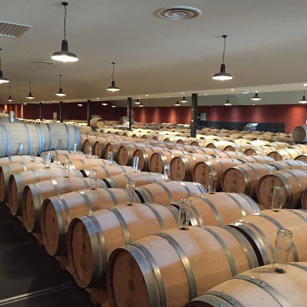 The barrel room at a winery in Sauternes