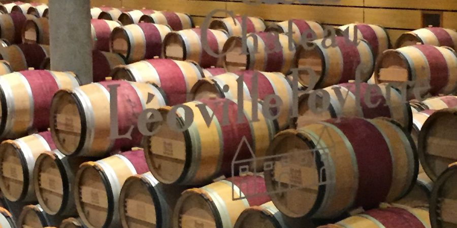 Experience the Wines of Bordeaux