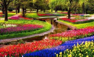 Famous Keukenhof Gardens on Tulip Time Cruise